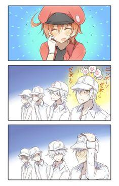 Cosplay Manga Hataraku Saibou (Cells at Work! Otaku Anime, Manga Anime, Haikyuu, Blood Anime, Desenhos Love, Tamako Love Story, Cute Comics, Cute Anime Couples, Anime Shows