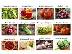 Russian Lessons, Celery, Asparagus, Cucumber, Spinach, Pumpkin, Stuffed Peppers, Vegetables, Food