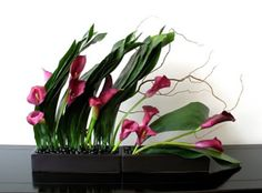 contemporary flower arrangement : cala