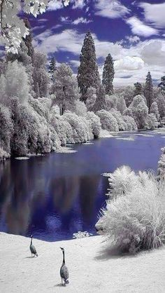 Landscapes - Amazing winter beauty - from Dreamy Nature Beautiful World, Beautiful Images, Landscape Photography, Nature Photography, Infrared Photography, Winter Scenery, Winter Beauty, Winter Landscape, Mountain Landscape