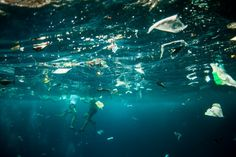 While on a recent trip to Nusa Lembongan, off the coast of Bali, photographer Nick Pumphrey got to see ocean plastic pollution up close and personal. Water Pollution, Plastic Pollution, Ibiza, Plastic And Environment, Lembongan Island, Save Our Oceans, Manta Ray, New Earth, Marine Life