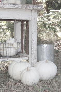 FRENCH COUNTRY COTTAGE: PUMPKINS & ROSES