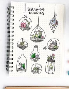 Plant terrarium doodles. A bullet journal doodle inspiration by amazing ig@plant.doodles.