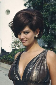 CLAUDIA CARDINALE SEXY BUSTY POSE HUGE CLEAVAGE IN SILVER DRESS 24X36 POSTER | eBay