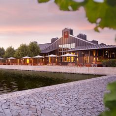 Best Napa Wineries to visit: Alpha Omega