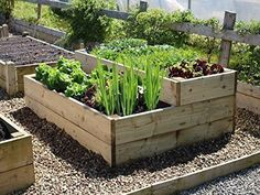 Raised Bed With Split Levels 6ft x 4ft 2 or 3 of these