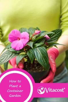 How to plant a container garden #diy