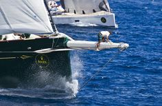 Maxi Yacht Rolex Cup    Scuttlebutt.com