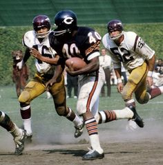 Gale Sayers Running Back Chicago Bears Nfl Bears, Bears Football, Nfl Chicago Bears, Nfl Football Players, Sport Football, Chicago Bears Pictures, Gale Sayers, Nfl Uniforms, Football Pictures