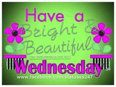 Wednesday Hump Day, Wednesday Greetings, Good Morning Wednesday, Wednesday Humor, Wonderful Wednesday, Monday Humor, Good Morning Greetings, Wacky Wednesday, Happy Day Quotes