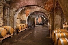 Stone Hill Winery survived Prohibition by growing mushrooms in the cellars..