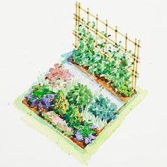 Planting Plans Inspired by the White House Kitchen Garden Potager Garden, Veg Garden, Easy Garden, Edible Garden, Garden Ideas, Garden Bed, Garden Tips, Garden Landscaping, Harvest Garden