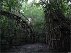 Abandoned roller coaster at Chippewa Lake Park - Medina, Ohio - It was in operation for 100 years – from 1878 to 1978 (awesome photo!)