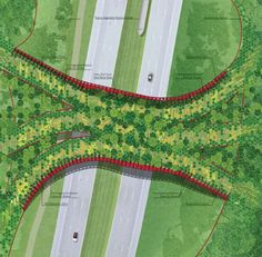 ARC Wildlife Crossing Design Competition Designs revealed - World Landscape Architecture