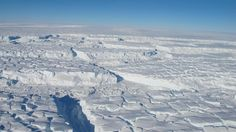 """http://pinterest.com/pin/7248049375087314/ http://pinterest.com/pin/7248049375087305/ West Antarctic Ice Sheet's Collapse Triggers Sea Level Warning - NBC News - """"E.T. says: (Here we go, alternative media world and Alex bullshitter Jones. Another slap in your faces. Maybe the sea levels will get so high in the U.S. that Texas will be underwater, no such luck. Isn't that a daisy? lmao =))"""""""