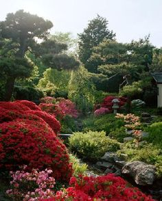 Shofuso Tea Garden... Need to remember this place for wedding pictues someday