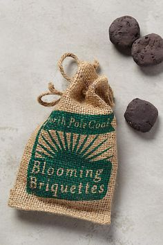 Coal Briquette Seed Bombs - anthropologie.com