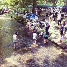 "Handmade-Market in Kamigamo Shrine,that is monthly event,the 4th Sunday.Children play at a stream ""Nara-no-ogawa"" in shrine.  上賀茂神社さん手作り市 取材中。今日はならの小川が気持ちいい~。 - @Wako Kato- #webstagram"