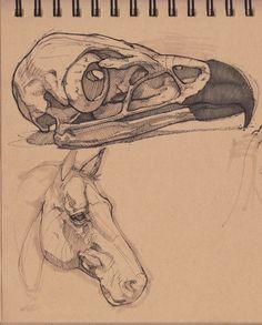 Golden Eagle Skull & Horse, Charles Hamel on ArtStation at https://www.artstation.com/artwork/golden-eagle-skull-horse