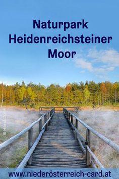 Tier, Austria, Outdoor, Bike Rides, Hiking Trails, Road Trip Destinations, Explore, Outdoors, Outdoor Games