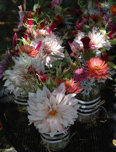 deborah jean's DANDELION HOUSE and GARDEN : Mason Jar Wedding Centerpieces With MY Local Flowers