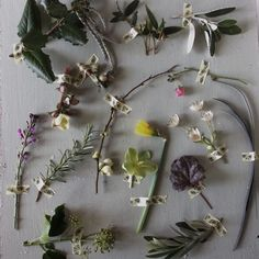 Back in January 2015 I intended doing this every week with flowers and foliages I had growing here. It lasted about 3 weeks   I still think it's pretty though.  This was from 17 Jan 2015 if you're interested!!! I won't make any such rash undertakings this year .....