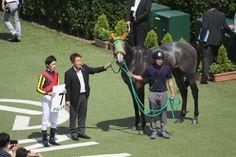 新馬戦を勝った芦毛のバレリオ、全姉はアイスフォーリス
