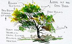 Painting Oaks in Watercolor. Watercolor Art Lessons, Watercolor Tips, Watercolour Tutorials, Watercolor Landscape, Watercolor Flowers, Watercolour Paintings, Watercolor Techniques, Sketch Painting, Flower Art