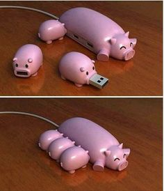 You can purchase our Pig Chum right now! We ship world wide! Pig Chum USB Hub + 3 TF Card Readers A USB Pig Hub with 3 USB Mini Pig Micro SD...