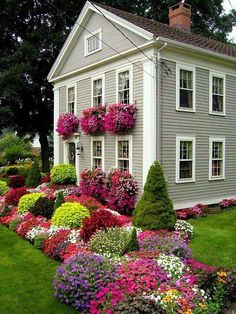i want an old house with flowers like that
