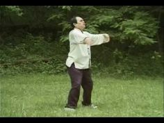 This is Li's style Five Animal Play demonstrate by Nianzu Li. background music by composer Shi Zhi You.