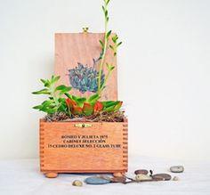 dharmakarmaarts cigar box planter
