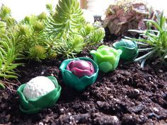 Polymer clay vegetable garden ! Handmade Fairy Garden Accessories, Set of Four: Lettuce, Red Cabbage, Broccoli and Cauliflower made of Polymer Clay