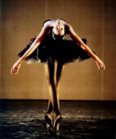 dying swan from Black Swan