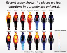 Body mapping reveals emotions know bodily reaction patterns