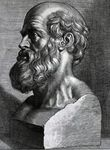 Hippocrates of Cos or Hippokrates of Kos ( c. 460 BC – c. 370 BC) was an ancient Greek physician. He is referred to as the father of western medicine. He is first person to believe that diseases were caused naturally, not because of superstition and gods. Natural Medicine, Medical Astrology, Classical Greece, Classical Period, Classical Art, Greek History, Medical History, Ancient Greece, Greece