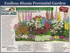 Endless Bloom Perennial Garden Plan, have to check the zones Perennial bed plan from Michigan Bulb Co, west garden Yard zone 8 four seasons flower garden perennial garden layout for images perennial garden layout. Take the latest Glamorous pictures of per Perennial Garden Plans, Flower Garden Plans, Perennial Gardens, Flowers Garden, Garden Design Plans, Yard Design, Perennial Bulbs, Flower Garden Layouts, Small Garden Plans
