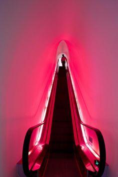 Neon. Lights