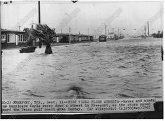 Freeport babies from my era remember Hurricane Carla in We were very, very young, but its impact will last forever. Freeport Texas, Texas Hurricane, Brazoria County, Visit Texas, Lake Jackson, Texas History, Corpus Christi, Canes, Storms