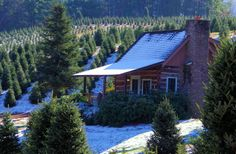 Romantic log cabin rental in the North Carolina Smoky mountains near Asheville.