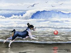 RAT TERRIER At The BEACH Dog Signed Watercolor Art by k9artgallery, $12.50