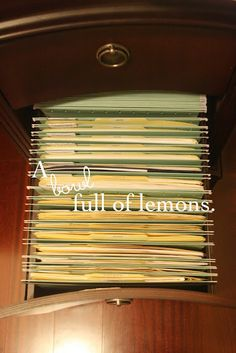 Detailed post on how to organize your filing cabinet