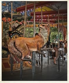 Exceptionally real-looking fox on the Greenway Carousel in Boston.  Interesting how its head is turned around to look behind it.