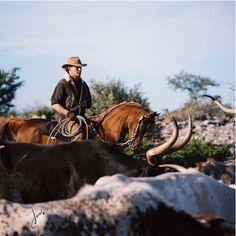 Patrick Swayze and his beloved Arabian stallion, Tammen. Photo by Javan Schaller