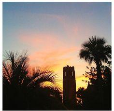 Century Tower Sunset