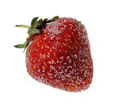 Organic fruits are best. ------------------------------------------------------------------------------ #fruits #fruitsalad #freshfruits #fruitsandveggies #organic #organicfood #healthy #health #green #fresh #refreshing #delicious #fruit ##apple #pineapple #banana #strawberry #kiwi #manga #orange #blueberry #peach #melon #grapes #love #sweet #picoftheday #photooftheday #bestoftheday #pictureoftheday