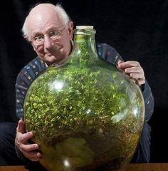 Plant survives 50 years locked in a bottle A plant sealed into a large glass bottle more than 50 years ago is thriving, having created its own miniature, self-contained eco-system. Its owner, David Latimer, began his experiment in 1960 when bottle gardens were all the rage, curious to see how well the plants would do. He planted four species, of which only one survived, but that is going strong, despite having been deprived of fresh air or moisture since the bung was last removed in 1972.