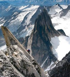 Climb something massive