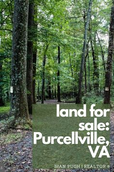 Looking for your dream piece of land in Purcellville? Check out this gorgeous property just outside of downtown Purcellville. #northernva #purcellville #virginia #varealtestate Leesburg Va, Fairfax County, Loudoun County, Northern Virginia, Land For Sale, Great Places, Dreaming Of You, The Outsiders, Street View