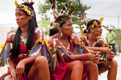 Crown, Hair Styles, Asa, Beauty, Female Warriors, Games, Palms, Culture, Brazil